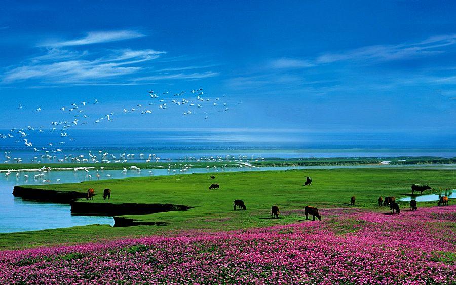 美丽的潘阳湖短文围绕__________和____________两个方面赞美鄱阳湖(图3)  美丽的潘阳湖短文围绕__________和____________两个方面赞美鄱阳湖(图5)  美丽的潘阳湖短文围绕__________和____________两个方面赞美鄱阳湖(图10)  美丽的潘阳湖短文围绕__________和____________两个方面赞美鄱阳湖(图12)  美丽的潘阳湖短文围绕__________和____________两个方面赞美鄱阳湖(图19)  美丽的潘阳湖短文围绕_